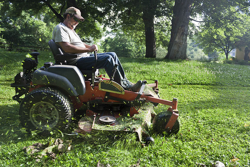Lawn Cutter Image